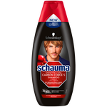 Schauma For Men Carbon Force