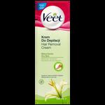 Veet Dry Skin