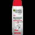 Garnier Mineral Magnesium Ultra Dry 72h