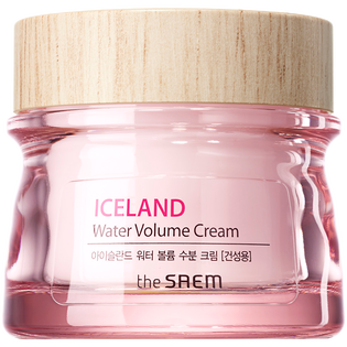 The Saem_Iceland_krem do skóry suchej, 80 ml