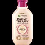 Garnier Botanic Therapy Botanic Therapy