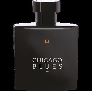 Vittorio Bellucci_Chicago Blues_woda toaletowa męska, 100 ml_1