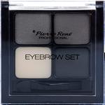 Pierre Rene Eyebrow Set
