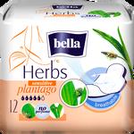 Bella Herbs Plantago