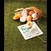 Holika Holika_Sleek Egg Beige_pianka do oczyszczania twarzy, 140 ml_9