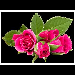 Mbeauty_Róża_różana maska na płachcie nawilżająca i ochronna z antyoksydantami, 23 g_2