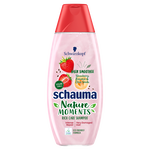 Schauma Nature Moments Hair Smoothie
